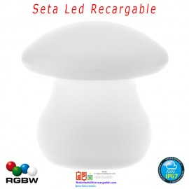 Seta luz Led Recargable RGBW