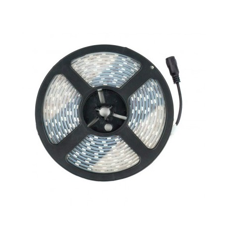 Tira Led 5050 Blanco frio 60 led/m IP67